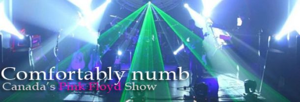 Buy your Comfortably Numb tickets